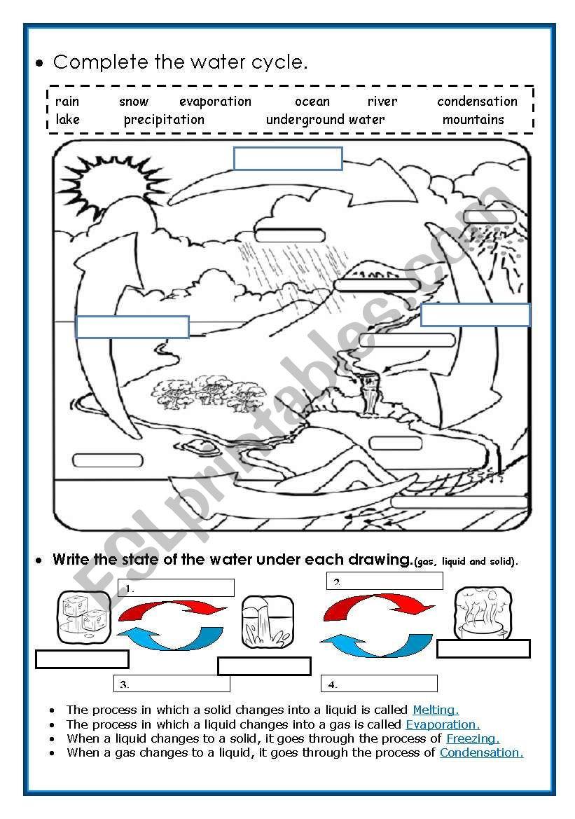 Water Cycle Worksheet Pdf the Water Cycle Esl Worksheet by Piedadrosell