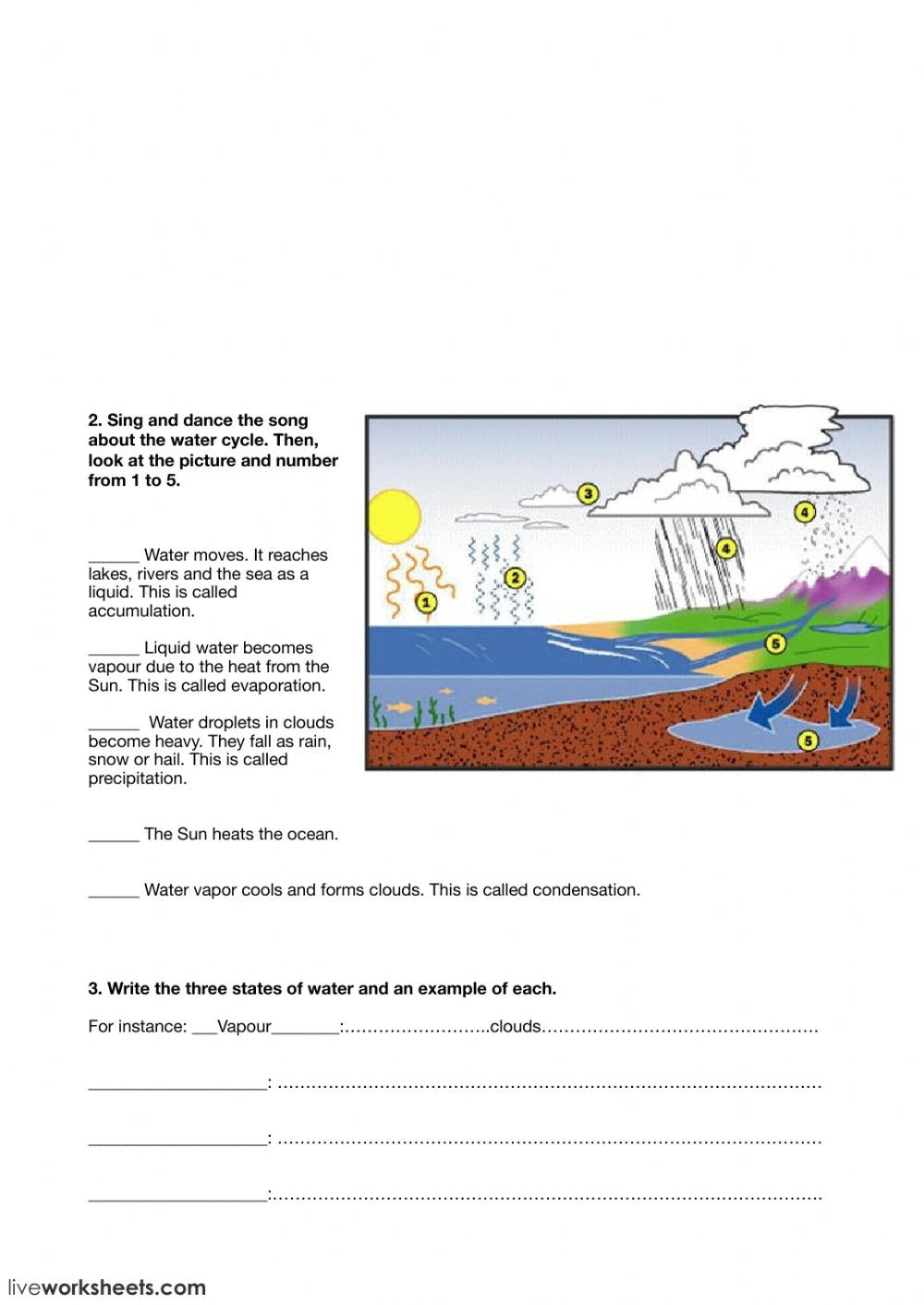 Water Cycle Worksheet Pdf Water Cycle and States Of Water Interactive Worksheet