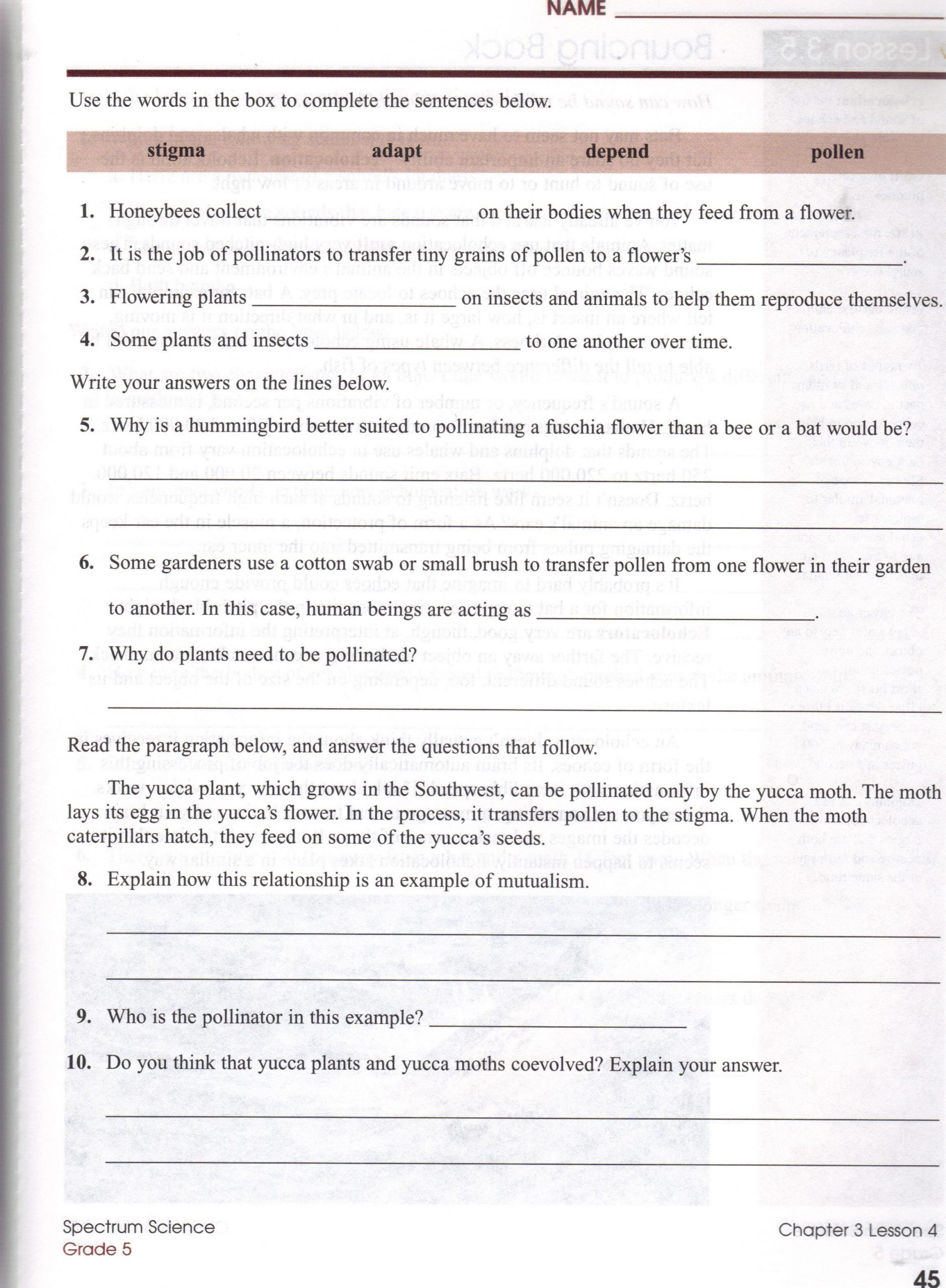 4 4 Biomes Worksheet Answers Biomes at A Glance Worksheet Answers