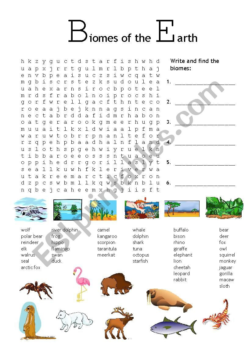 4 4 Biomes Worksheet Answers Biomes Of the Earth Esl Worksheet by Fionavb