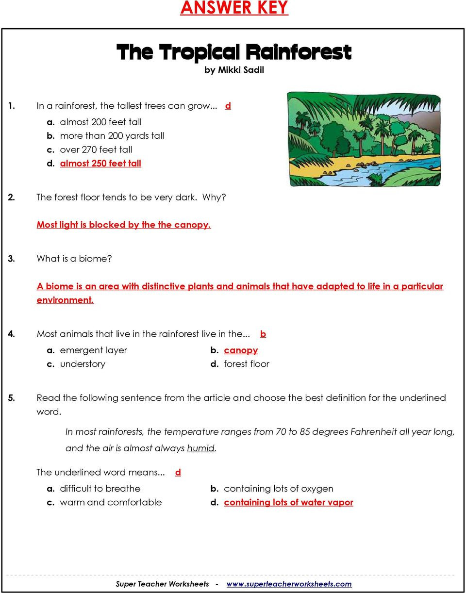 4 4 Biomes Worksheet Answers the Tropical Rainforest Rainforest Series Part 1 by Mikki