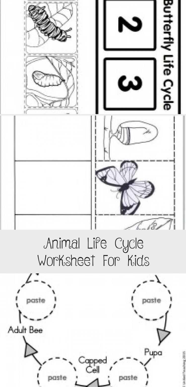 Butterfly Life Cycle Worksheet 2 Life Cycle butterfly Worksheet 1 toysworksheetpreschool
