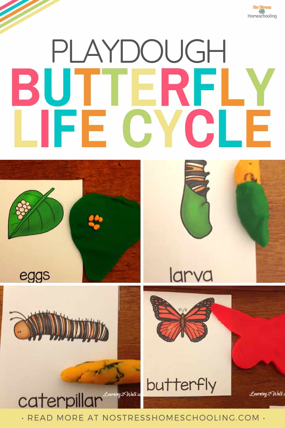 Butterfly Life Cycle Worksheet 2 Playdough Kindergarten butterfly Life Cycle Activities