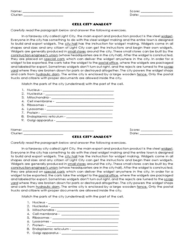 Cell City Analogy Worksheet Cell City Analogy Endoplasmic Reticulum