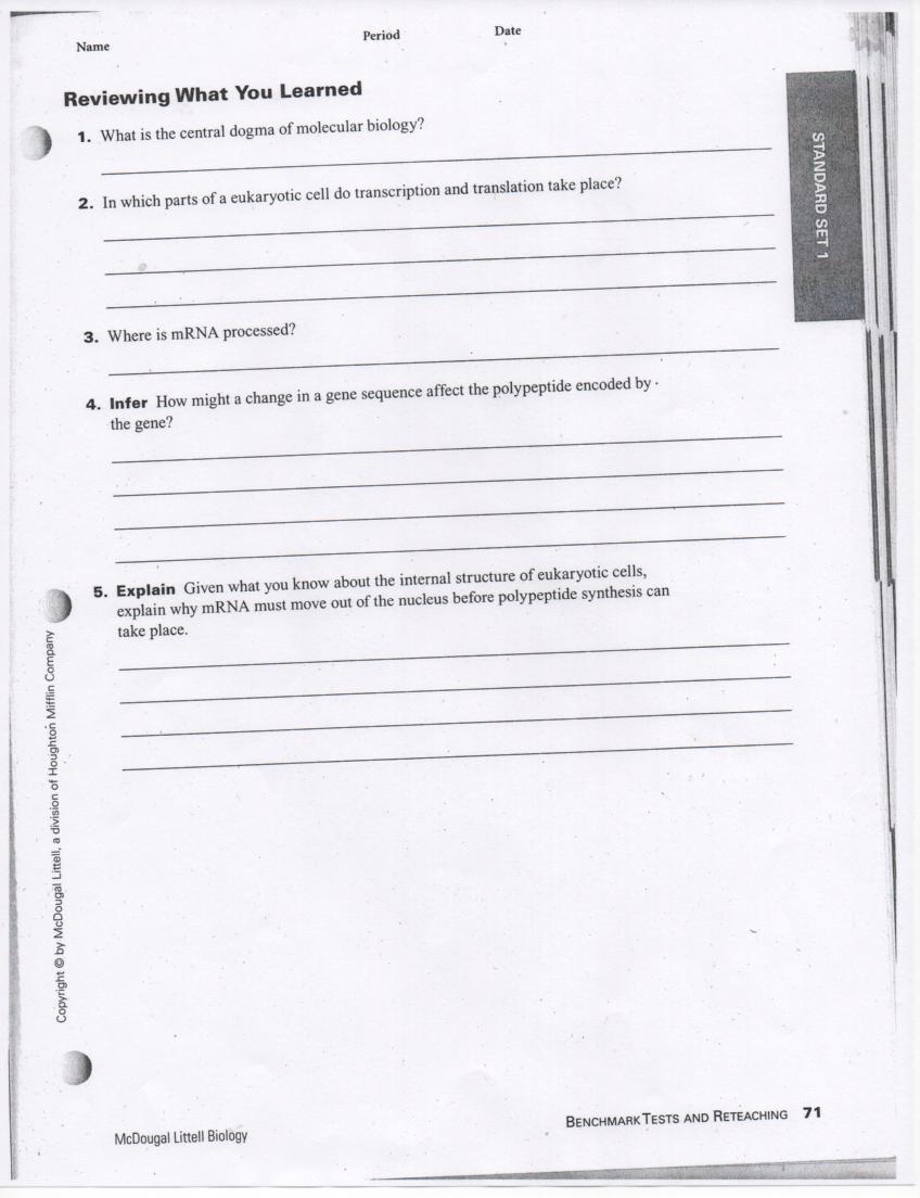 Cell City Analogy Worksheet Homework May Penarroyo