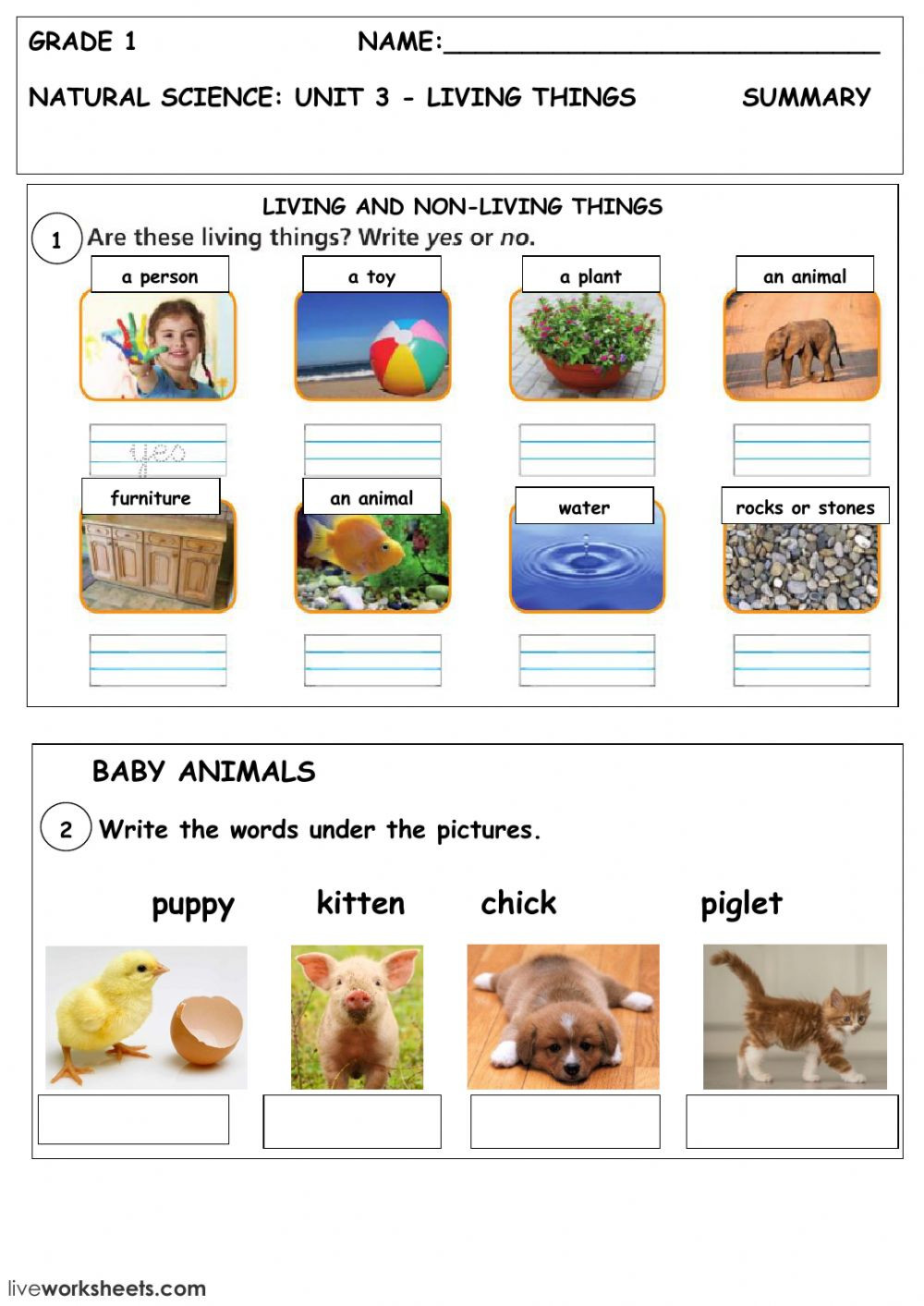 Characteristics Of Living Things Worksheet Living and Non Living Things Interactive Worksheet