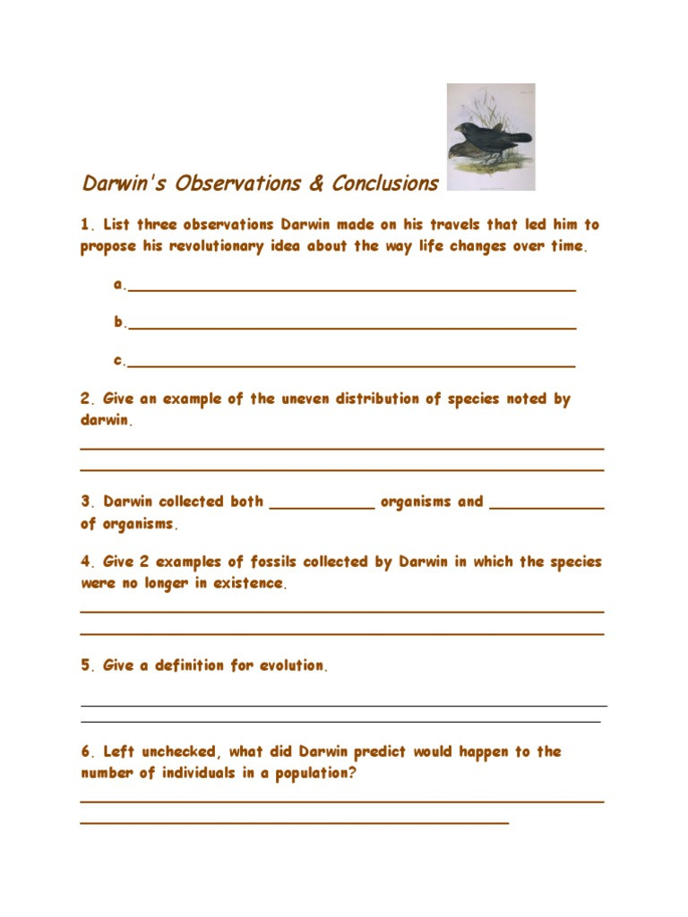Darwin Natural Selection Worksheet Darwin S Natural Selection Worksheet