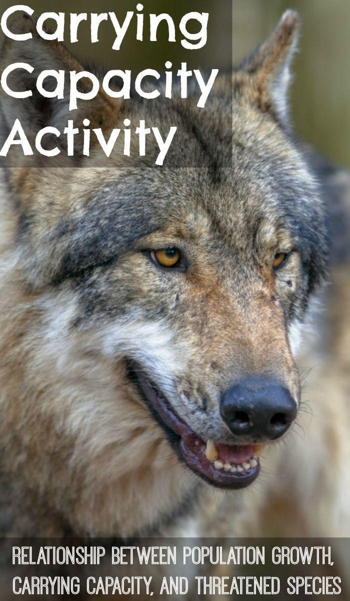 Darwin039s Natural Selection Worksheet Answers Carrying Capacity Activity Exploring Human Impact On