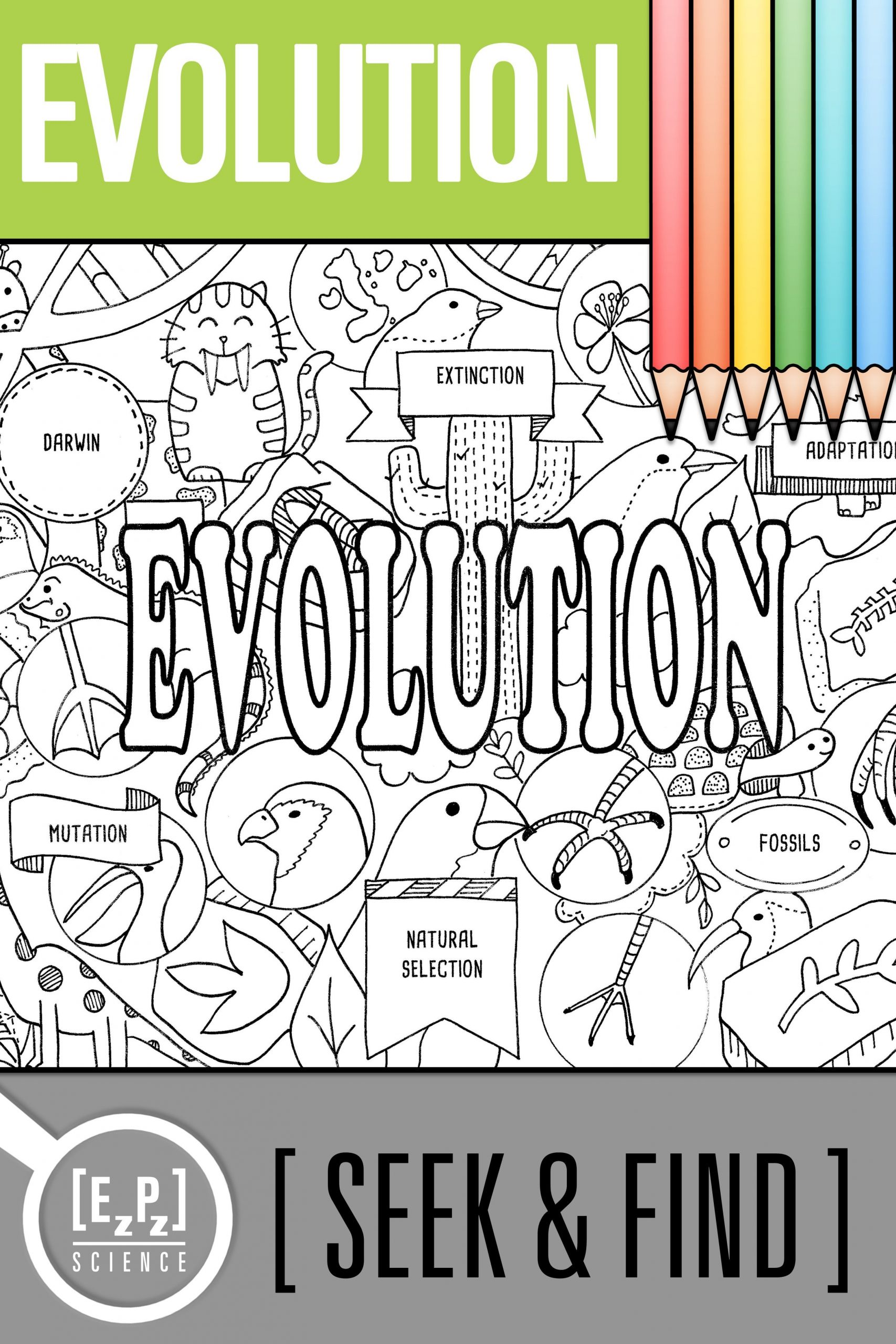 Darwin039s Natural Selection Worksheet Answers Evolution Seek and Find Science Doodle Page