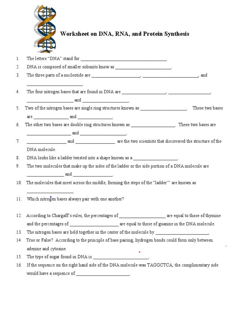 Dna and Rna Worksheet Dna Rna Worksheet 1 Nucleotides