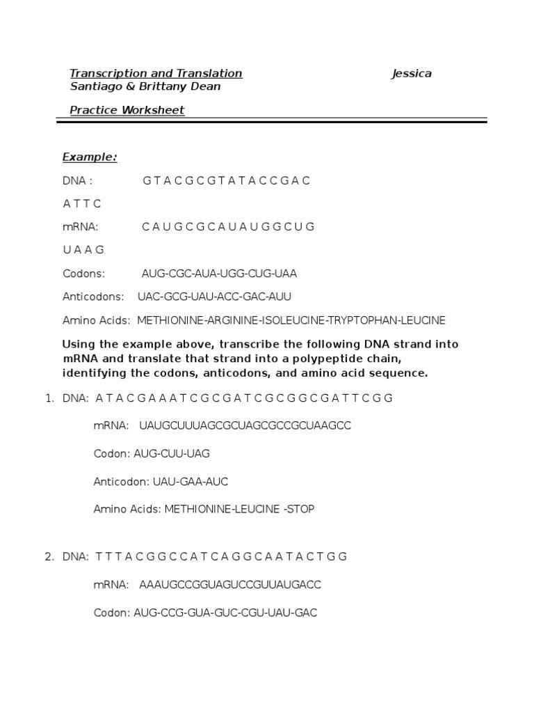 Dna Transcription and Translation Worksheet Transcription and Translation Worksheet