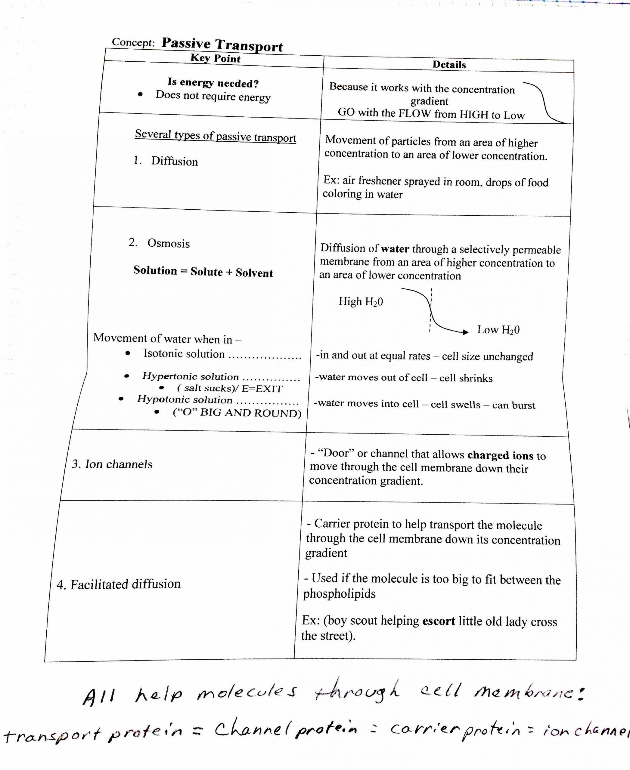 Ecology Review Worksheet 1 28 [ Ecology Review Worksheet 2 ]