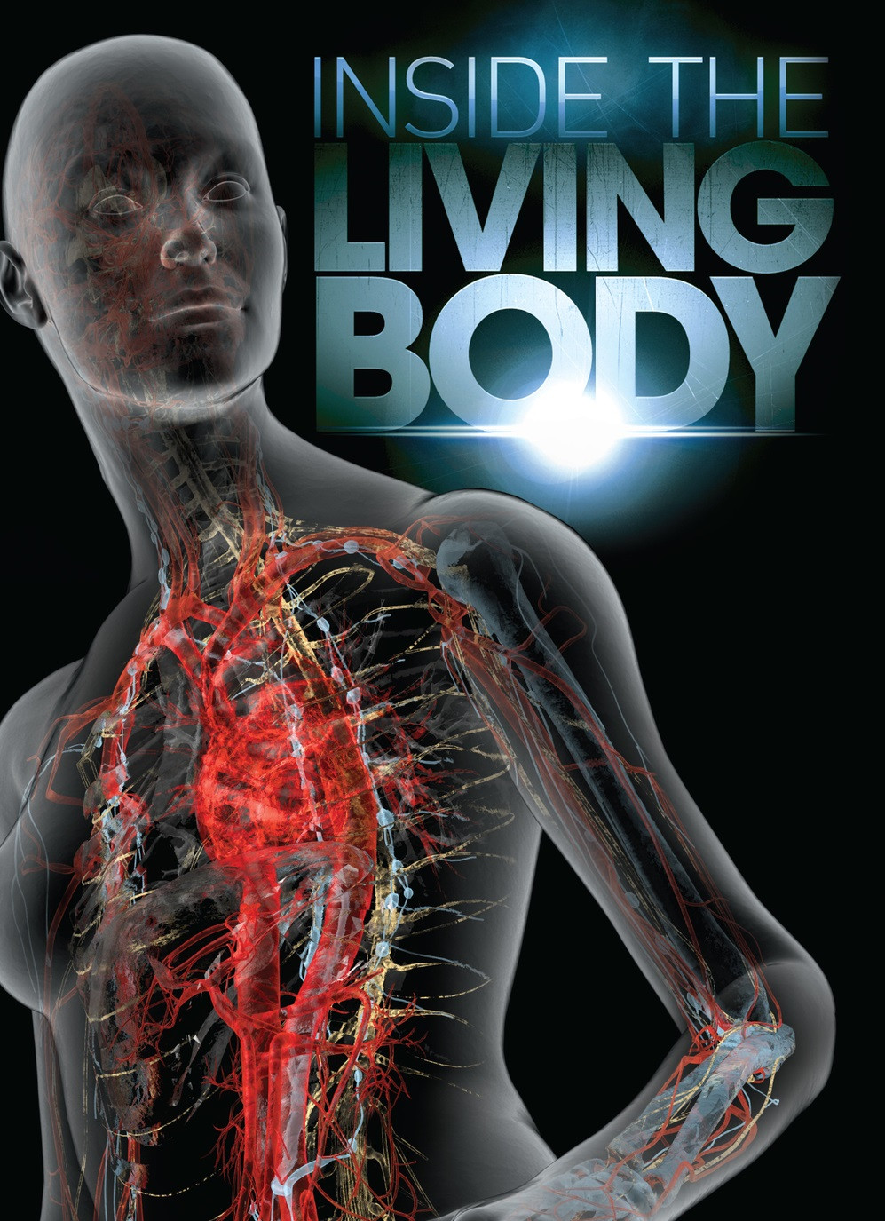 Inside the Living Body Worksheet Inside the Living Body Tv Movie 2007 Imdb