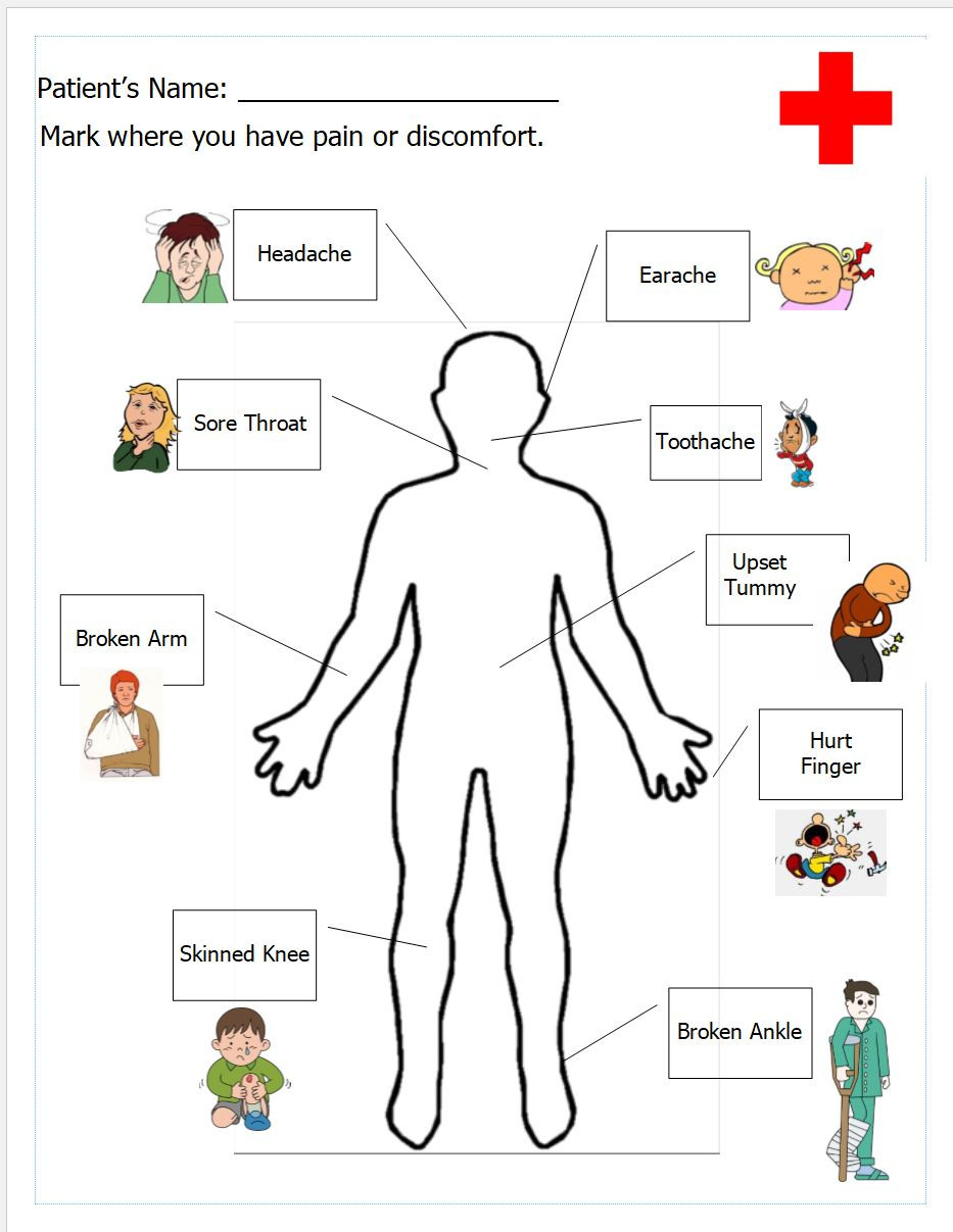 Inside the Living Body Worksheet the Human Body – Anatomy for Kids – Inventors Of tomorrow