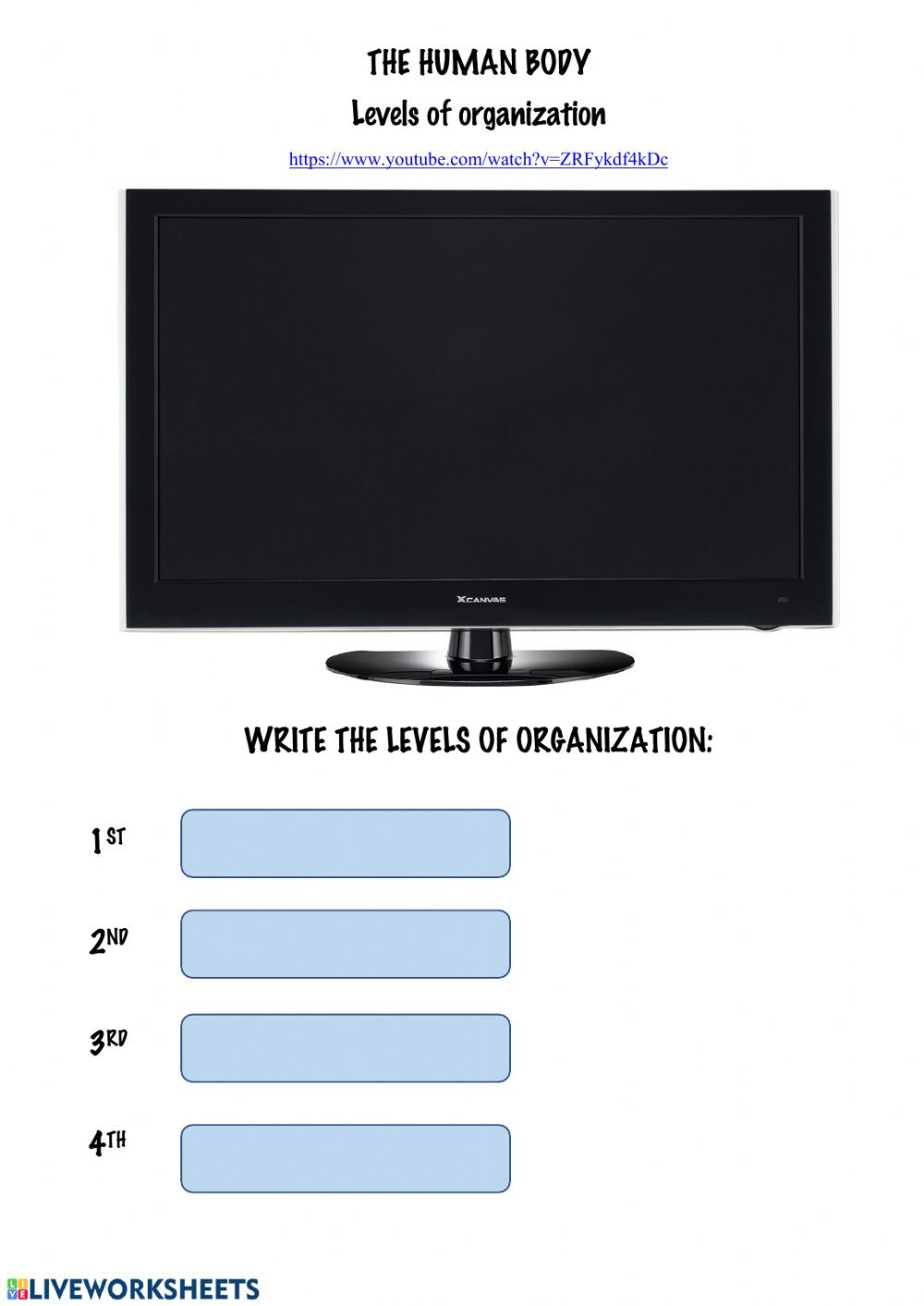 Levels Of organization Worksheet Levels Of organization Interactive Worksheet