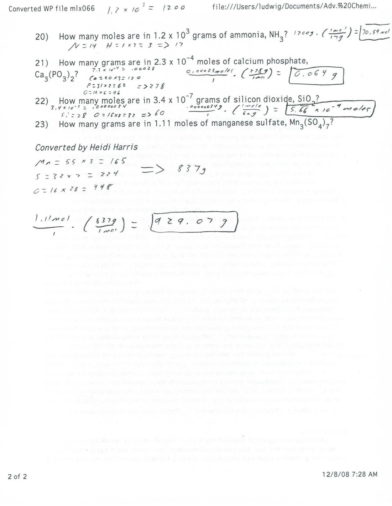 Mole Worksheet 1 A Chemist S Favorite Pet the Mole
