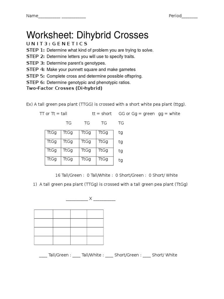 Monohybrid Crosses Worksheet Answers top Ten Floo Y Wong Artist — Dihybrid Cross Worksheet 2 Answers