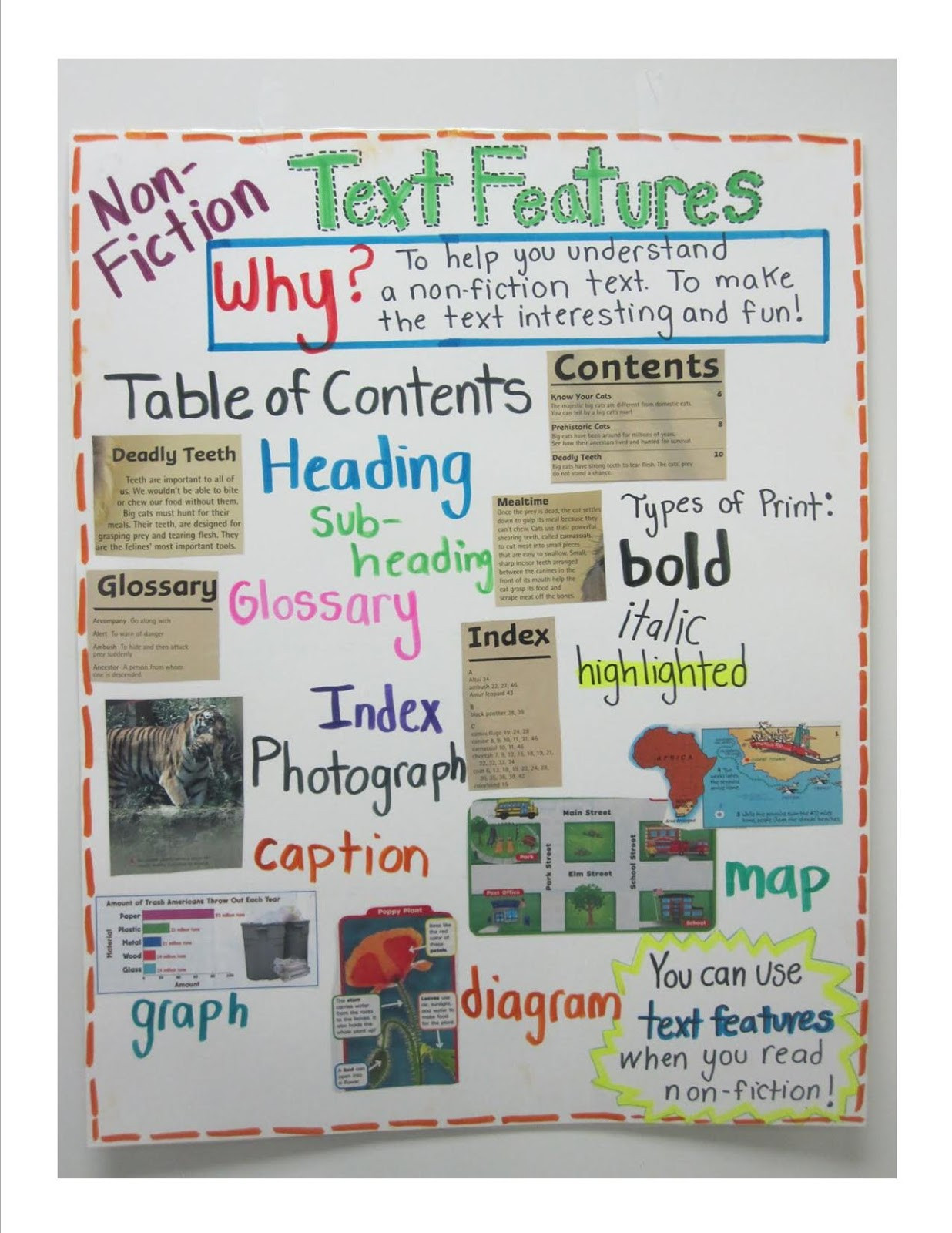 Nonfiction Text Features Worksheet 14 Best S Of Nonfiction Text Features First Grade
