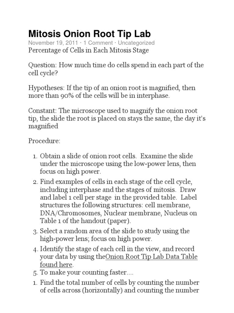 Onion Cell Mitosis Worksheet Answers Mitosis Ion Root Tip Lab Mitosis