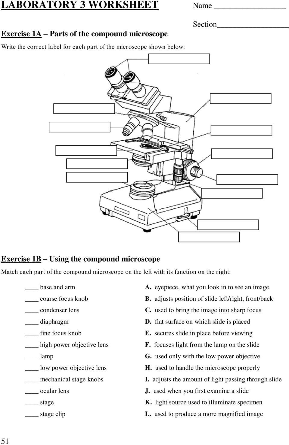 Parts Of A Microscope Worksheet Lab 3 Use Of the Microscope Pdf Free Download
