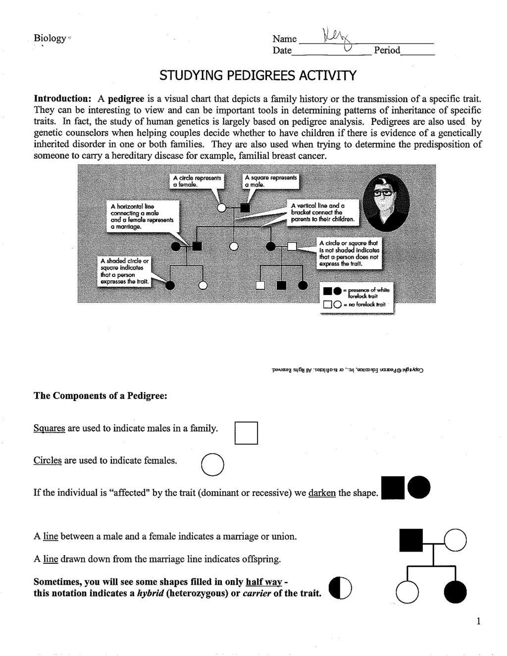Pedigree Worksheet Answer Key Datee Studying Pedigrees Activity Pdf Free Download