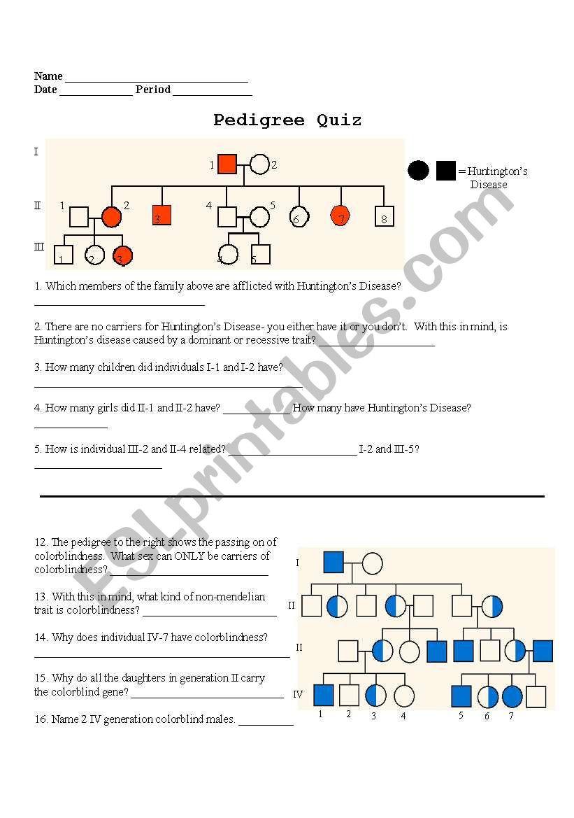 Pedigree Worksheet Answer Key English Worksheets Pedigree Quiz
