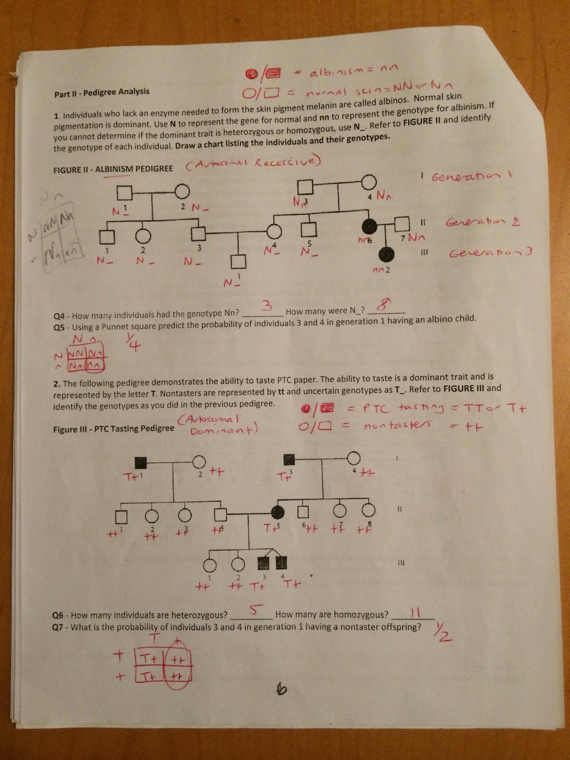 Pedigree Worksheet Answer Key Key Pedigree Analysis Worksheet Mrs Paulik S Website