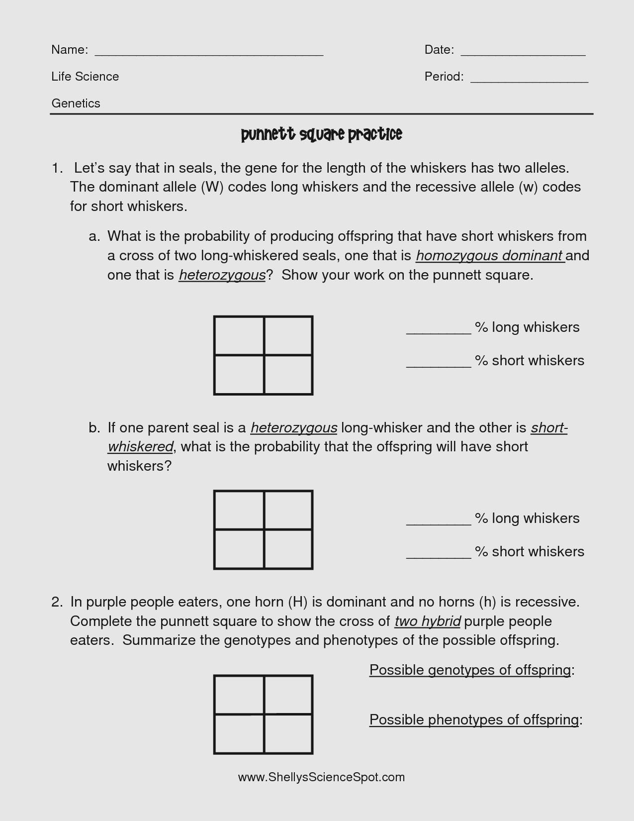 Punnett Square Practice Problems Worksheet Acceleration Practice Problems Worksheet