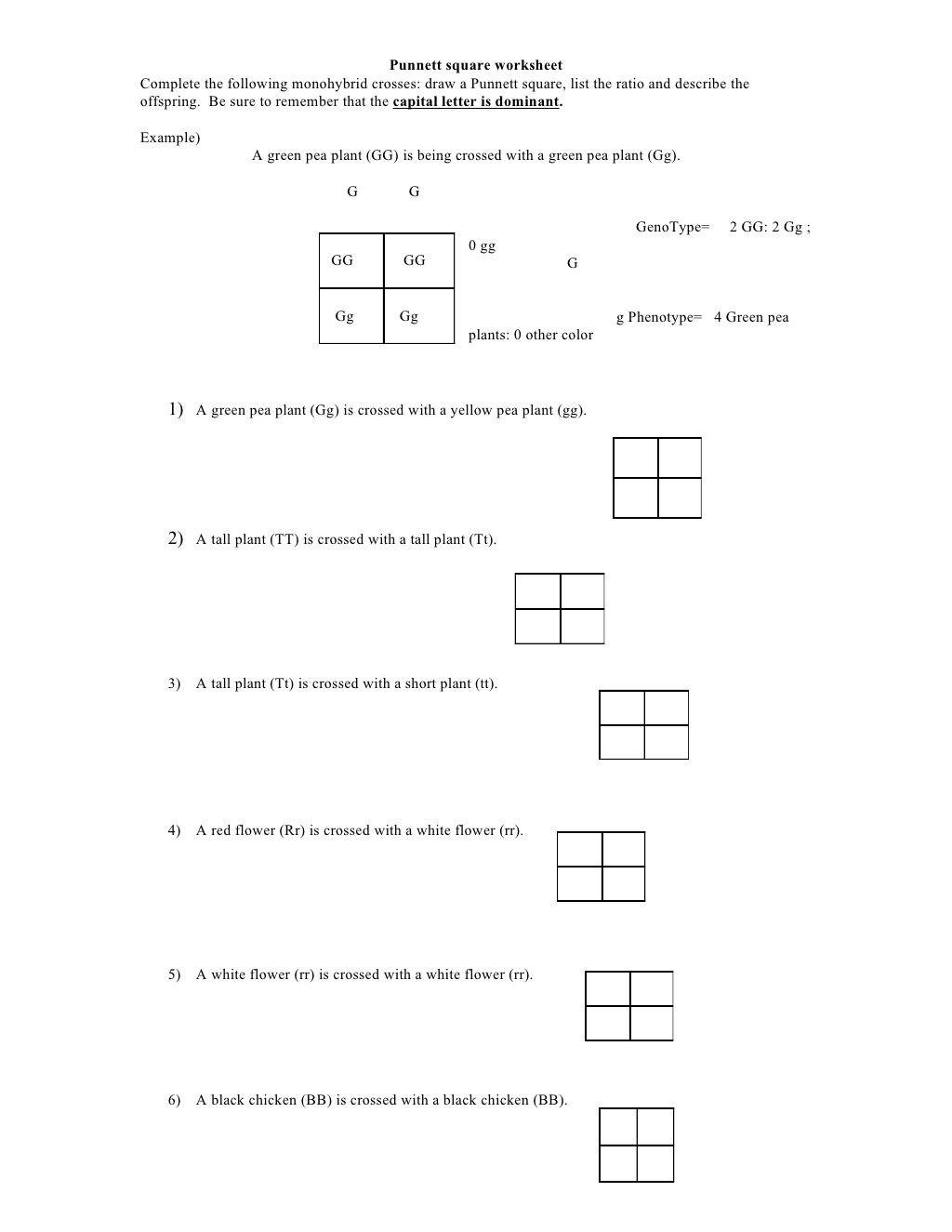 Punnett Square Practice Problems Worksheet Punnett Square Worksheet by Kpolson Via Slideshare