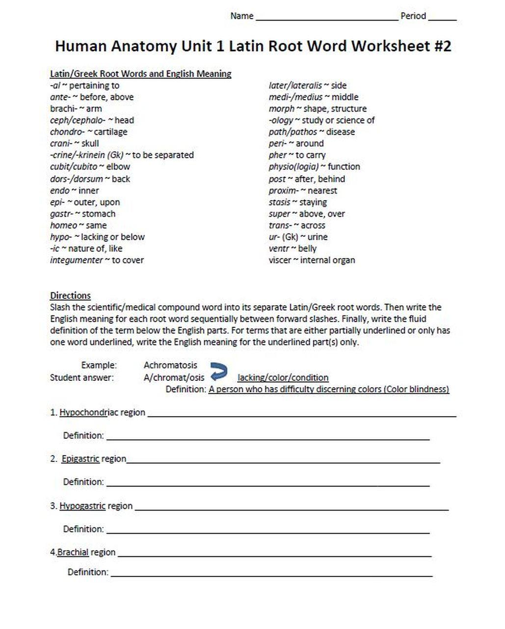 Root Words Worksheet Pdf Latin Root Word Worksheet Set for Unit E Human Anatomy & Physiology