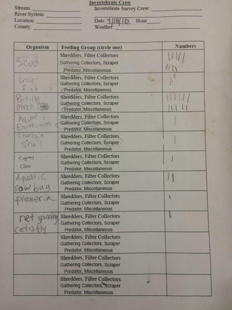 Science World Worksheet Answers Line Connections Science Scope