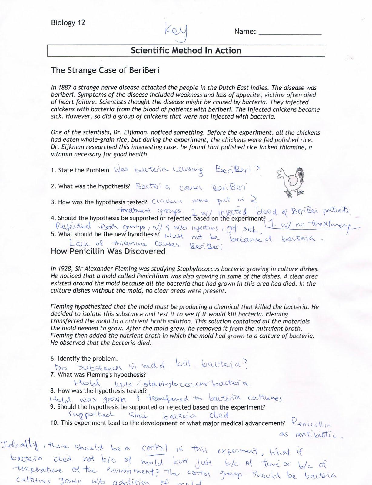 Scientific Method Worksheet Answer Key Simpson Science Worksheet Answers