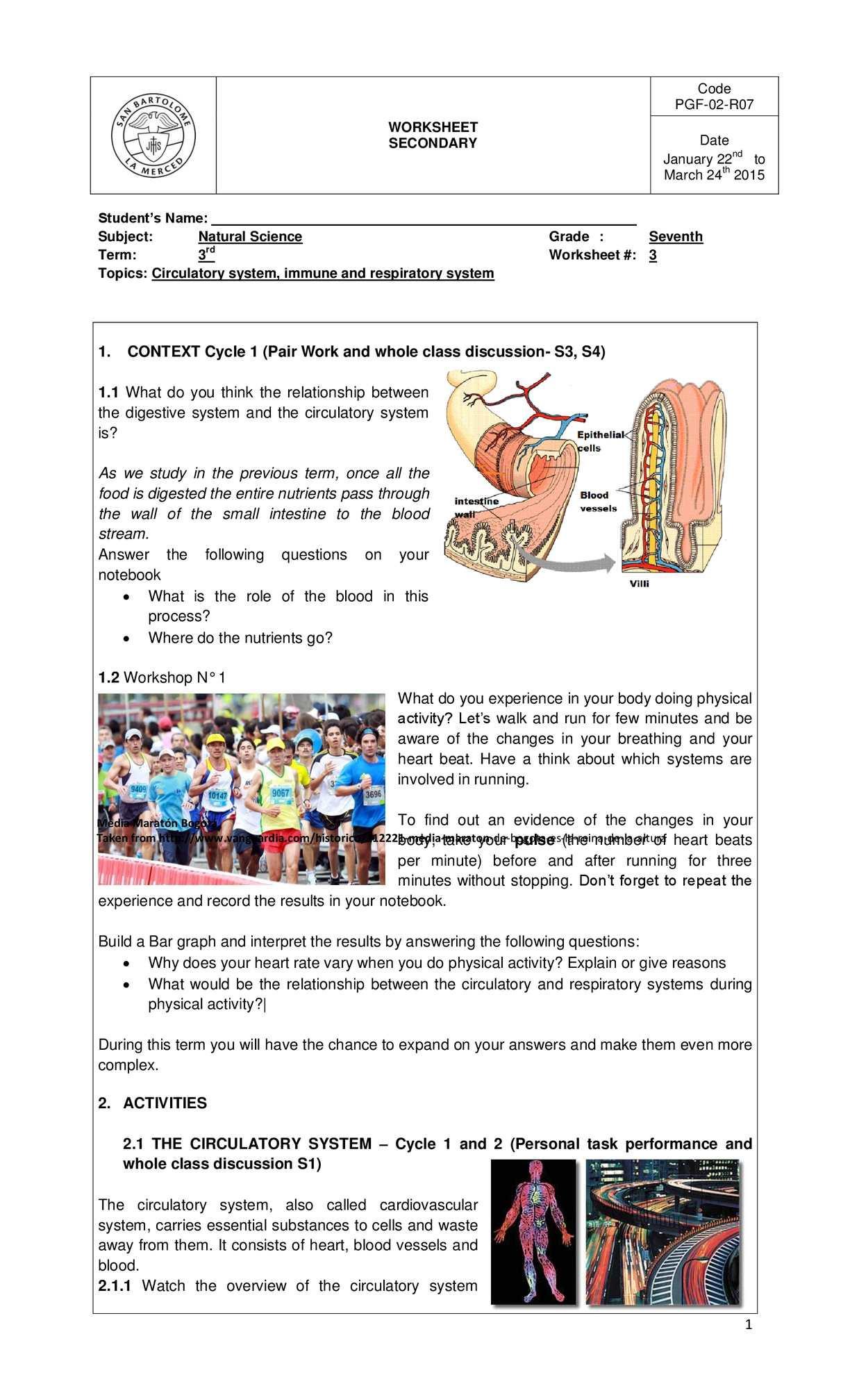 The Circulatory System Worksheet Calaméo Third Term Worksheet 1