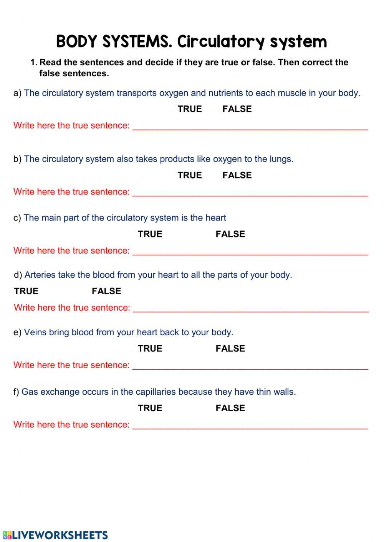 The Circulatory System Worksheet Circulatory System Interactive Worksheet