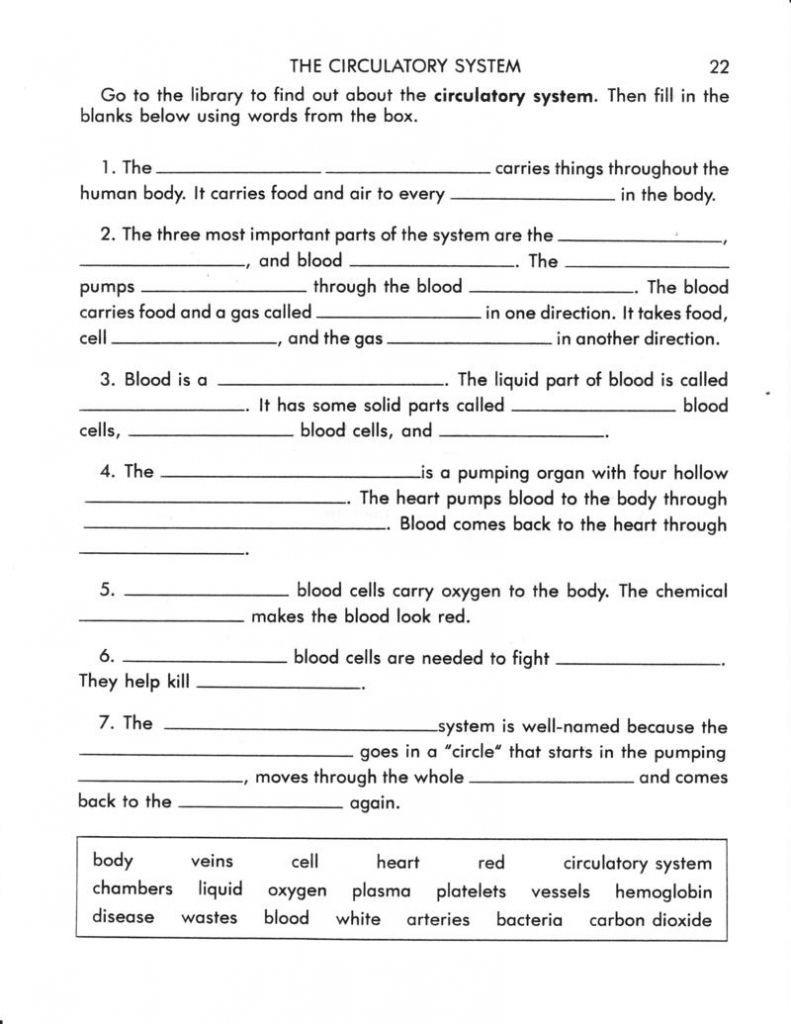 The Circulatory System Worksheet Circulatory System Worksheet Answers Terri Perryman