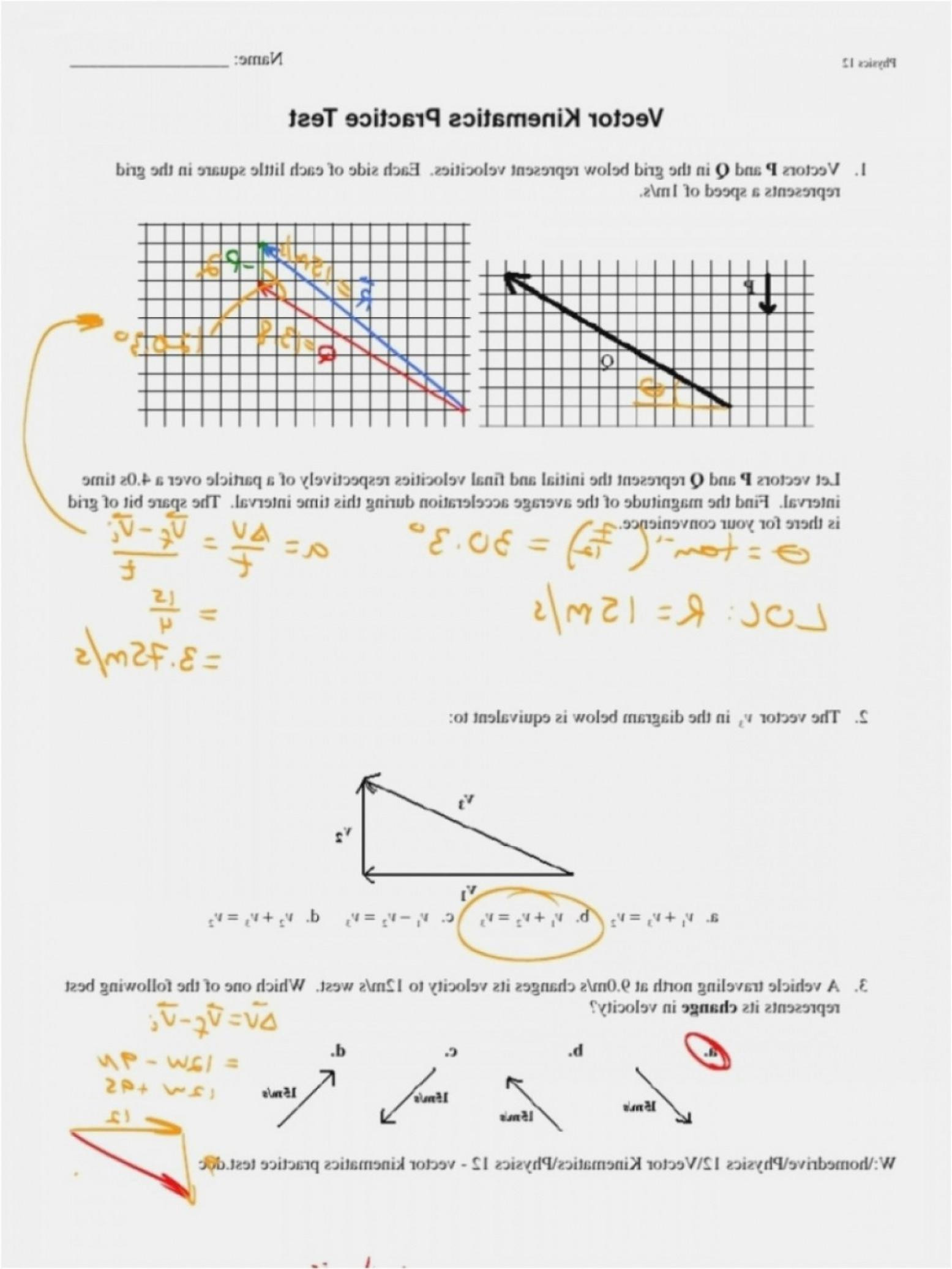 Vector Worksheet Physics Answers Best Physics Vector Worksheet Answer Key No