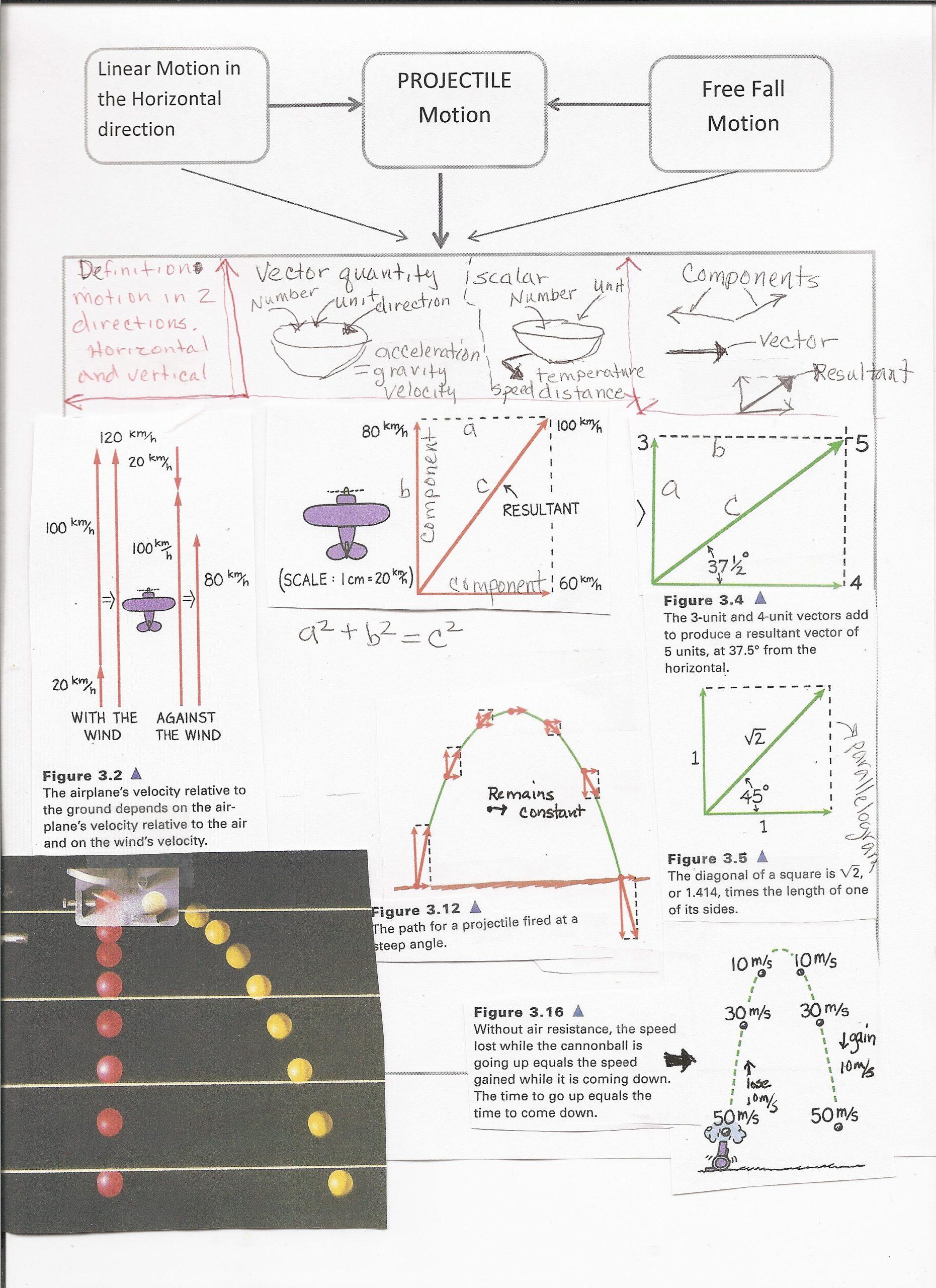 Vector Worksheet Physics Answers Conceptual Physics Worksheet