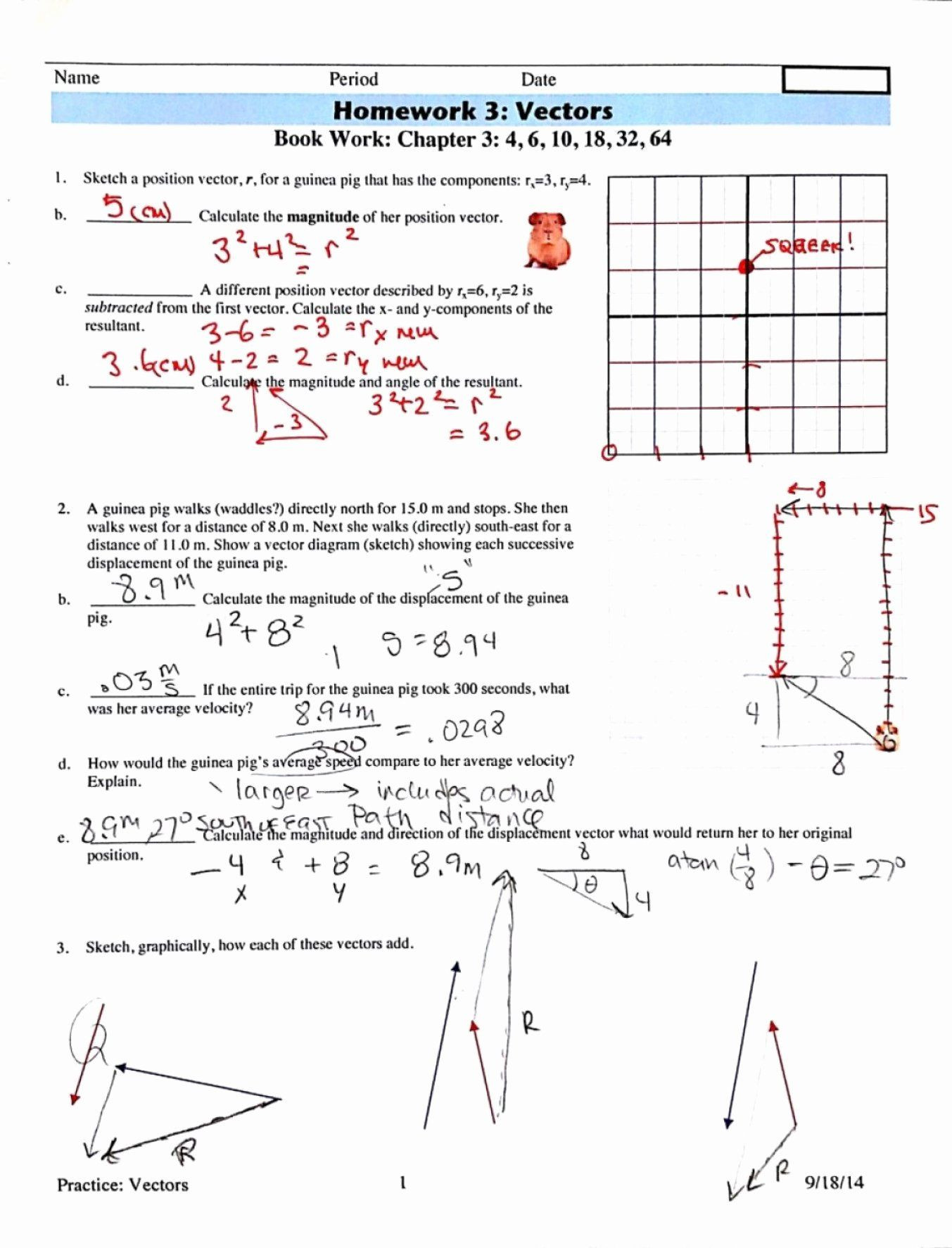 Vector Worksheet Physics Answers Vector Projectile Motion and Worksheet