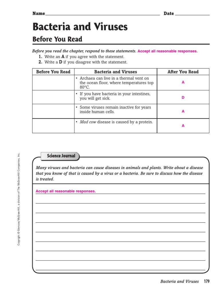 Virus and Bacteria Worksheet Bacteria and Viruses before You Read Bacteria