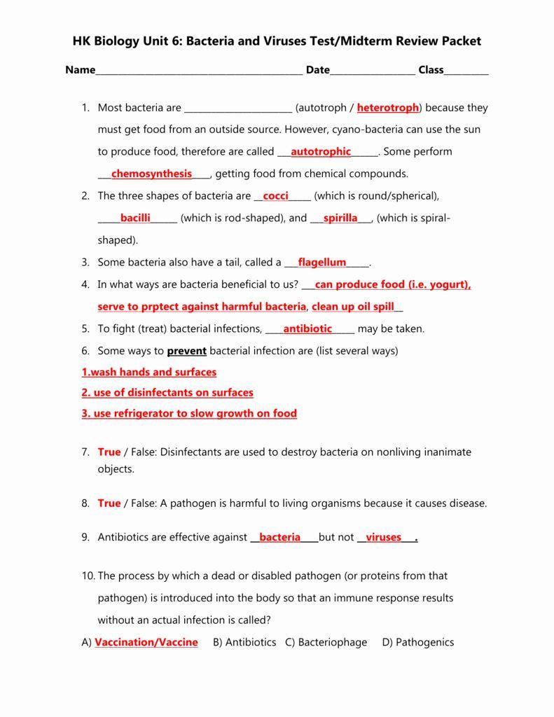 Virus and Bacteria Worksheet Pin On Customize Design Worksheet Line